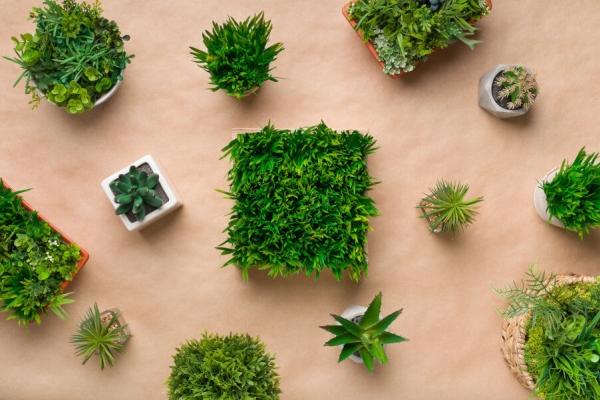 Sztuczne rośliny - idealne rozwiązanie do łazienki