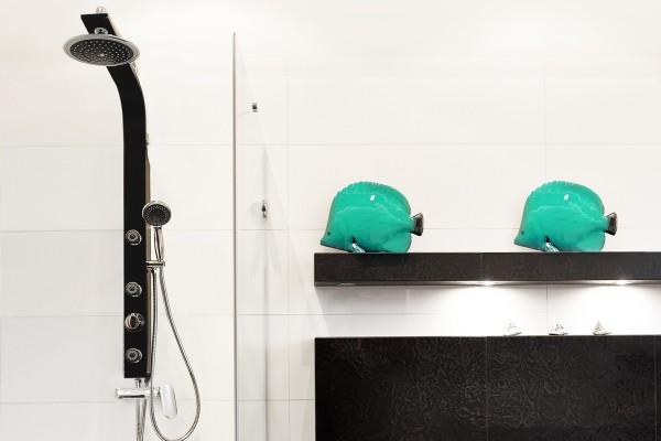 Czym się kierować kupując panel prysznicowy